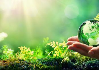 Développement durable - Objectifs 2030 : l'effet papillon ?