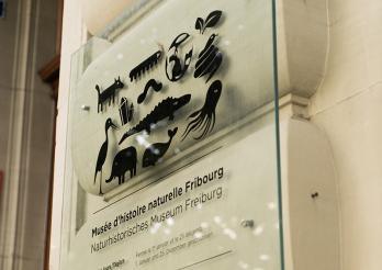 Schild des Naturhistorischen Museums