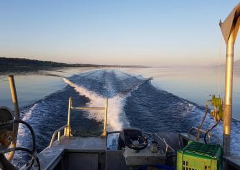 Pêche sur le lac de Neuchâtel