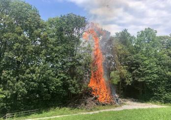 Trois incendies ont eu lieu en une journée dans la nature