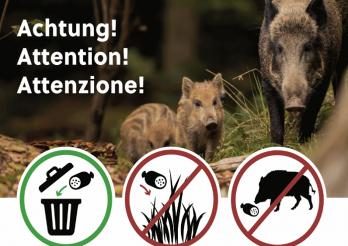 das Foto zeigt Tips für das richtige Verhalten zur Eindämmung der Schweinepest