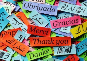 Mehrsprachigkeit an der EMF