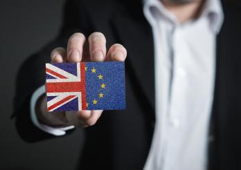 Ab dem 1. Januar 2021 gelten für Tiere und Tierprodukte aus dem Vereinigten Königreich neue Einfuhrbedingungen