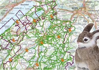 Le trajet du lapin de Pâques sur le portail cartographique