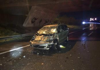 Un troupeau de vaches provoque un accident sur l'autoroute A12 à Matran / Verkehrsunfall mit einer Kuhherde auf der A12 in Matran