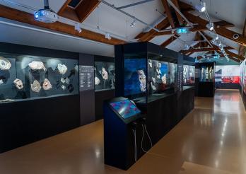 Expédition Spitzberg - Vue de l'exposition