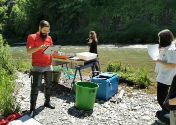 Elektro-Fischfang an der Saane