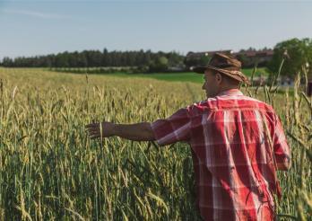 Das Foto zeigt einen Landwirt