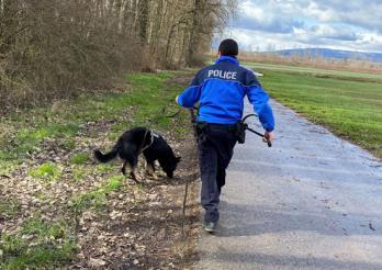 Le flair du chien policier permet l'arrestation de deux cambrioleuses