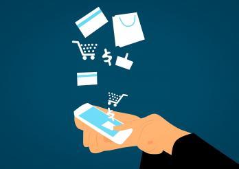Das Lebensmittelgesetz  verlangt, dass dieselben Informationen, wie sie auf der Etikette nötig sind, auch online verfügbar sind.