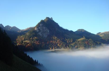 Rippa - Region Schwarzsee