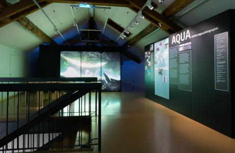 AQUA - Ausstellung