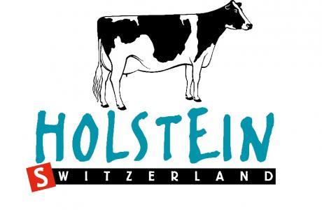 Holstein carré