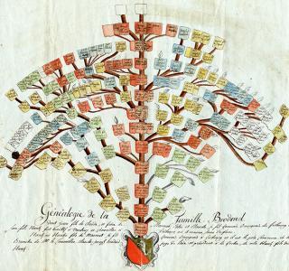 Stammbaum der Familie Brodard, um 1800