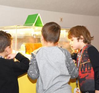 Elèves dans l'exposition Poussins