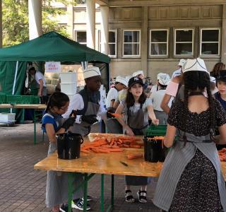 photo d'élèves en train de peler des carottes pour la fabrication du bouillon