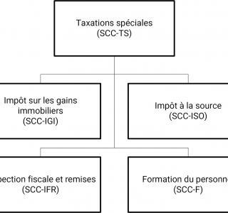 Organigramme SCC-TS