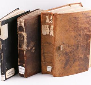 Exemples de Thurnrodel