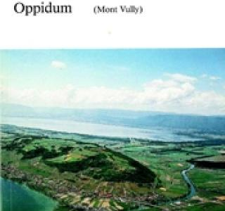Das Wistenlacher Oppidum, couverture