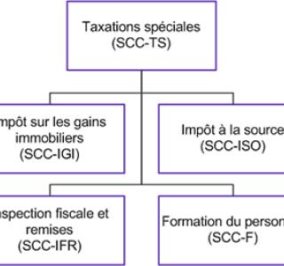 Organigramme SCC