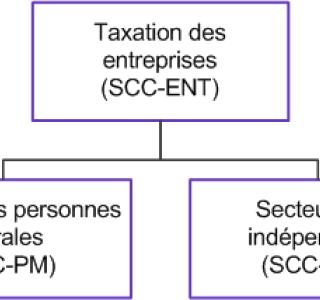 SCC Organigramme PM