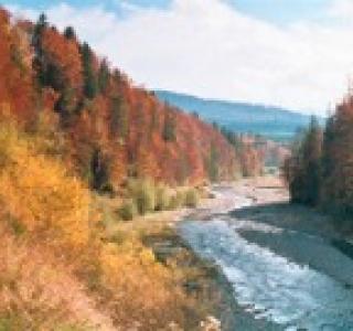 PNA_NSG_Sensegraben_Gebiet