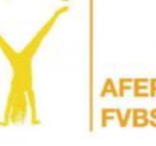 FVBSS