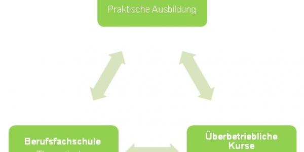 Die drei Standorte der Ausbildung