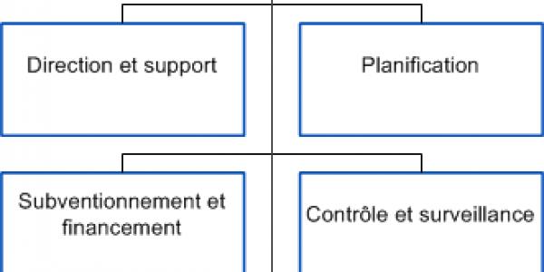 Organigramme SSP