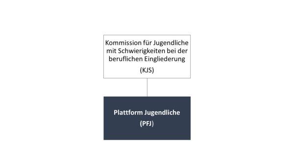 Organigramm PFJ