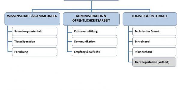 Organigramm des NHMF