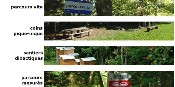 Les différentes infrastructures d'accueil en forêt