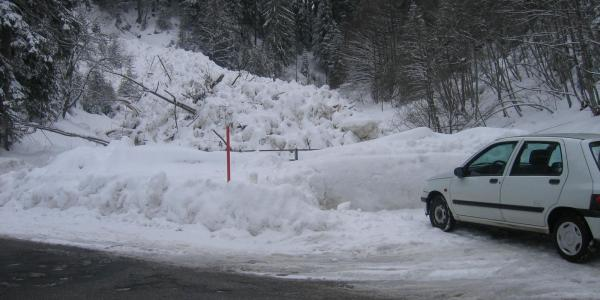 Avalanche 2006