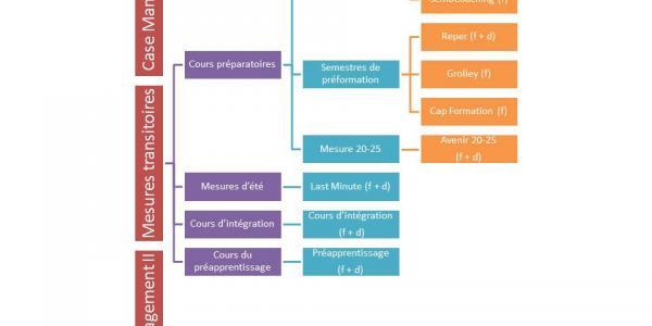 Organigramme des mesures transitoires liées à la Plateforme Jeunes