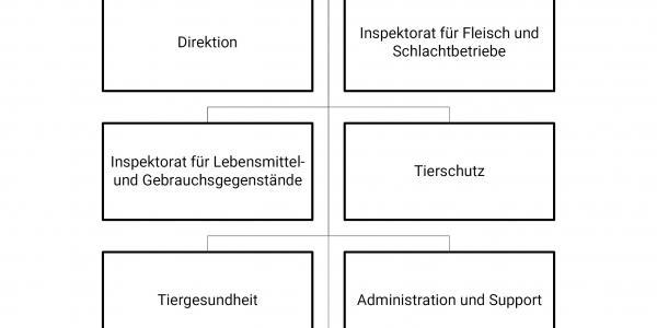 Organigramm des LSVW