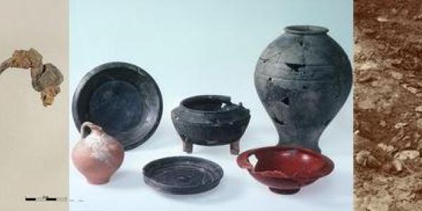 Murten/Combette mobilier La Tène, romain et squelettes médiévaux