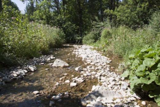 Qualité des cours d'eau