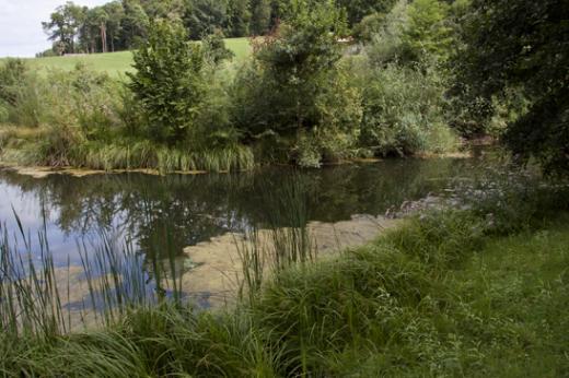 Umweltverträglichkeitsprüfung - Schutzmassnahmen