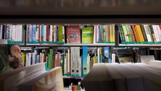 Bibliothek von Grangeneuve