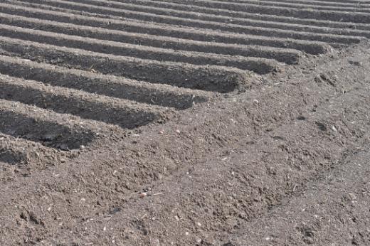 Épandage d'engrais de ferme