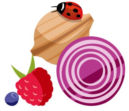 Alimentation et environnement - Les bonnes adresses