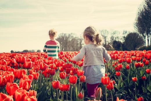Protection des enfants et des jeunes