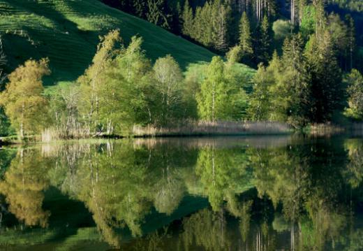 Lacs et cours d'eau