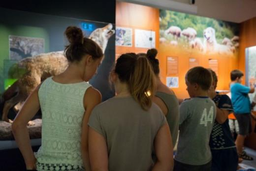 La Direction de l'instruction publique, de la culture et du sport renforce l'accès à la culture pour les jeunes fribourgeois