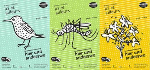 Vernissage de l'exposition ICI ET AILLEURS au Musée d'histoire naturelle de Fribourg