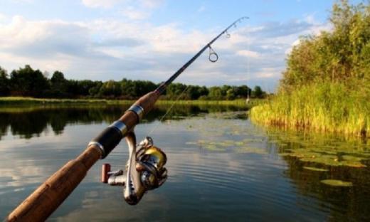 Pêche dans le lac de Neuchâtel