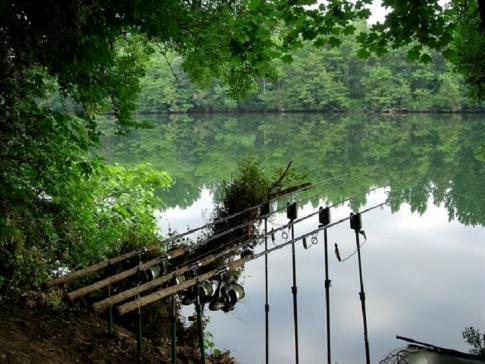 Fischereipatent