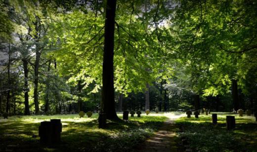 Friedhofreglement