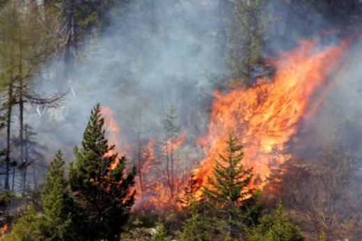 Danger d'incendie de forêt : appel à la prudence