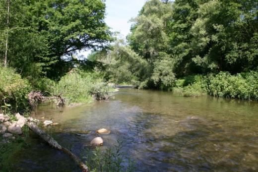 Les zones alluviales, entre terre et eau